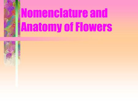 Nomenclature and Anatomy of Flowers. Flower Anatomy: