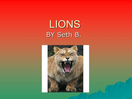 LIONS BY Seth B.. What does the lion look like?  We have a lot of fur  Sharp teeth  Weigh over a 100 pounds  They have tan fur  Have short tails.