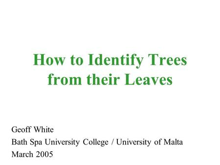 How to Identify Trees from their Leaves Geoff White Bath Spa University College / University of Malta March 2005.