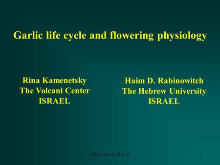WP2 G&H April 20021 Garlic life cycle and flowering physiology Rina Kamenetsky The Volcani Center ISRAEL Haim D. Rabinowitch The Hebrew University ISRAEL.