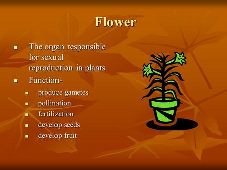 Flower Flower The organ responsible for sexual reproduction in plants The organ responsible for sexual reproduction in plants Function- Function- produce.