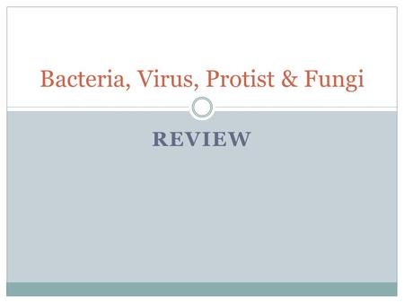 REVIEW Bacteria, Virus, Protist & Fungi. What is another word for moneran? 1. Virus 2. Protist 3. Bacteria 4. Fungi 0 of 29.