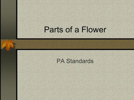 Parts of a Flower PA Standards. 4- Parts of a Flower a) Stamens 1- Male reproductive organs Stamens.
