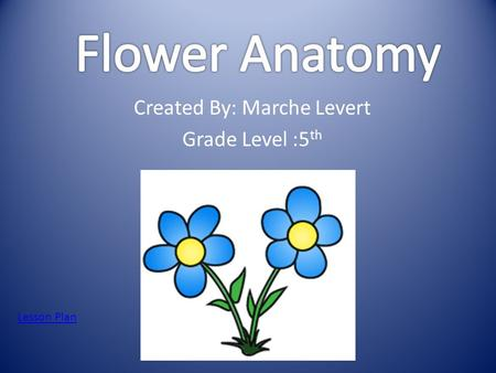 Created By: Marche Levert Grade Level :5 th Lesson Plan.