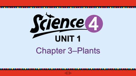 UNIT 1 Chapter 3–Plants. pp. 50-51 Do you know? What are the parts of a flower?What are the parts of a flower? Which part of the flower produces the pollen?Which.