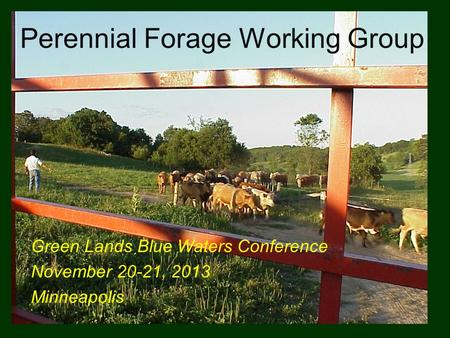 Perennial Forage Working Group Green Lands Blue Waters Conference November 20-21, 2013 Minneapolis.