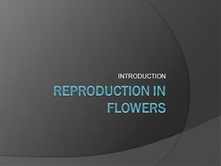 INTRODUCTION. WARM UP  Write the mind map about plants reproduction.