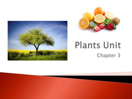 Plants Unit Chapter 3.