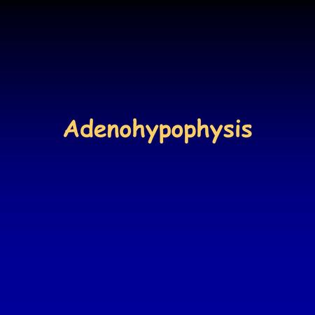 Adenohypophysis. Endocrine regulation there are many hormones that are under direct homeostatic regulation: –ADH, aldosterone, ANP –insulin, glucagon.
