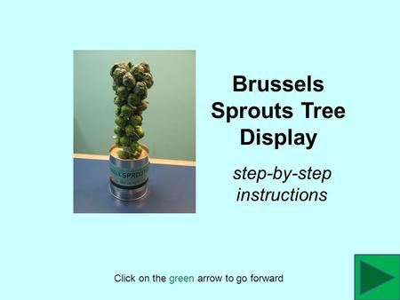 Brussels Sprouts Tree Display Click on the green arrow to go forward step-by-step instructions.