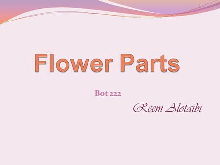Bot 222 Reem Alotaibi. Flower Parts The receptacle is the point at which the floral parts attach to the tip of the specialized stem bearing the flower.
