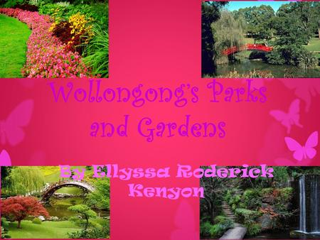 Wollongong's Parks and Gardens By Ellyssa Roderick Kenyon.