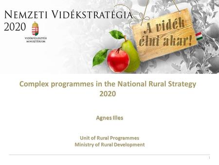 1 Complex programmes in the National Rural Strategy 2020 Agnes Illes Unit of Rural Programmes Ministry of Rural Development.