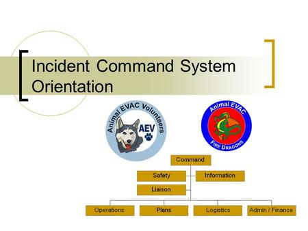 Incident Command System Orientation. Introduction Designed to  Help you learn the principles of ICS  Briefly acquaint you to basic ICS structure and.