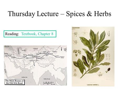 Thursday Lecture – Spices & Herbs Reading: Textbook, Chapter 8.