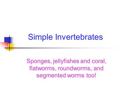 Simple Invertebrates Sponges, jellyfishes and coral, flatworms, roundworms, and segmented worms too!