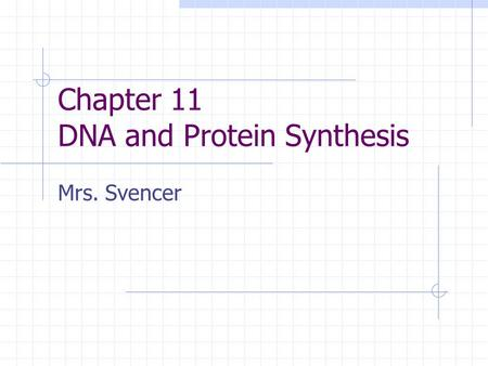 Chapter 11 DNA and Protein Synthesis Mrs. Svencer.
