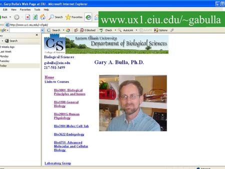 "Www.ux1.eiu.edu/~gabulla. …and powerpoint files www.ux1.eiu.edu/~cfgab Lectures saved as Html files.. Click on ""Chapter 1"""