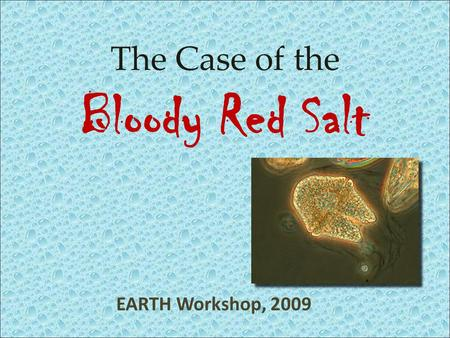 EARTH Workshop, 2009 The Case of the Bloody Red Salt.