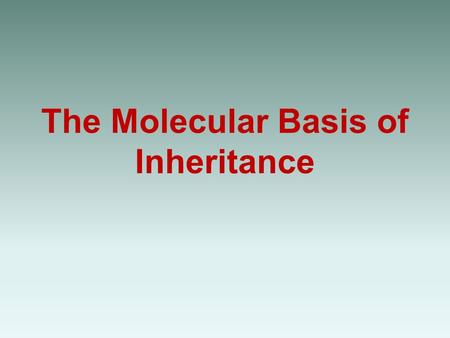 The Molecular Basis of Inheritance