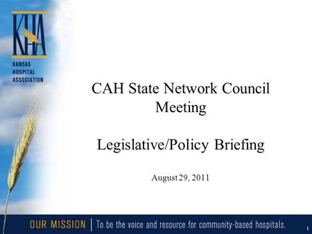 1 CAH State Network Council Meeting Legislative/Policy Briefing August 29, 2011.