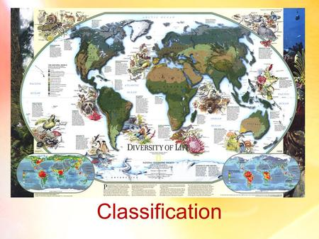 Classification. Taxonomy and Evolution Taxonomy Taxonomy – (a branch of Biology) involves the identification, naming, and classification of species To.