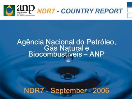NDR7 - COUNTRY REPORT Agência Nacional do Petróleo, Gás Natural e Biocombustíveis – ANP NDR7 - September - 2006.