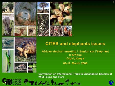1 Convention on International Trade in Endangered Species of Wild Fauna and Flora CITES and elephants issues African elephant meeting / réunion sur l'éléphant.
