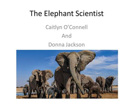 The Elephant Scientist Caitlyn O'Connell And Donna Jackson.