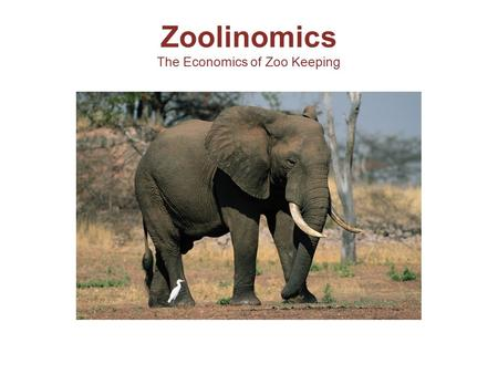 Zoolinomics The Economics of Zoo Keeping