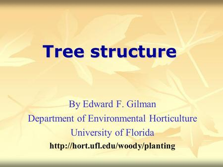 Tree structure By Edward F. Gilman Department of Environmental Horticulture University of Florida
