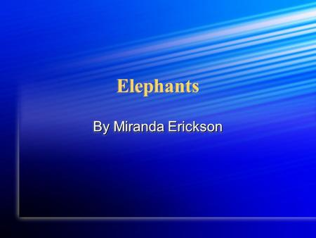Elephants Elephants By Miranda Erickson Habitat An elephant lives in Africa An elephant lives in Africa An elephant lives in Africa.