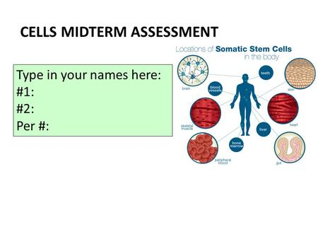 CELLS MIDTERM ASSESSMENT Type in your names here: #1: #2: Per #: