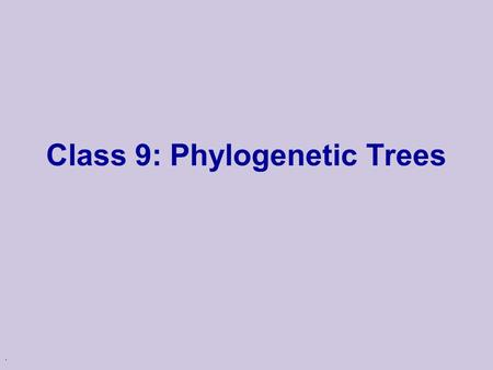 . Class 9: Phylogenetic Trees. The Tree of Life Evolution u Many theories of evolution u Basic idea: l speciation events lead to creation of different.