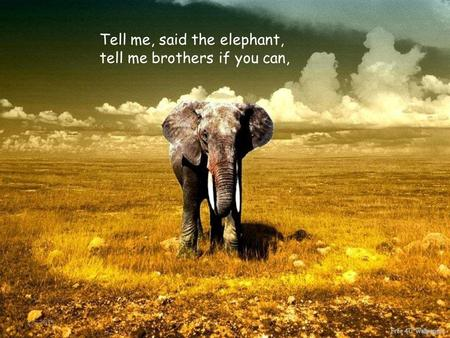 2-5-2015 Tell me, said the elephant, tell me brothers if you can,