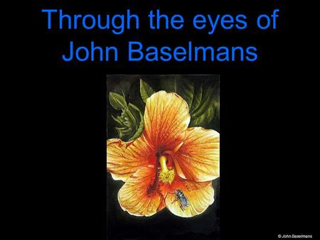 Through the eyes of John Baselmans © John Baselmans.