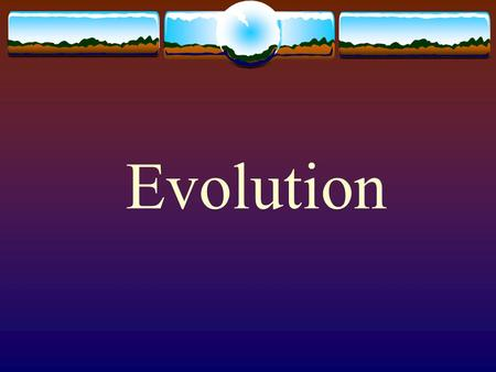 Evolution. California State Standard 3. Biological evolution accounts for the diversity of species developed through gradual processes over many generations.