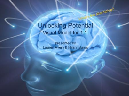 Unlocking Potential presented by Lauren Avery & Hilary Burns Visual Model for 1:1 What's the alternative?