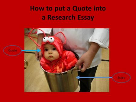 How to put a Quote into a Research Essay Quote Essay.