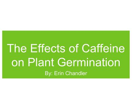 The Effects of Caffeine on Plant Germination By: Erin Chandler.