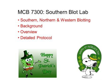 MCB 7300: Southern Blot Lab Southern, Northern & Western Blotting Background Overview Detailed Protocol.