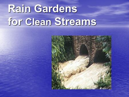 Rain Gardens for Clean Streams. Did you know? Up to 70% of pollution in streams, rivers and lakes comes from storm water runoff. rivers and lakes comes.