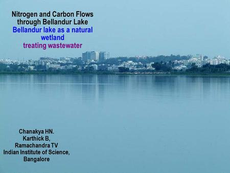 Nitrogen and Carbon Flows through Bellandur Lake Bellandur lake as a natural wetland treating wastewater Chanakya HN. Karthick B, Ramachandra TV Indian.