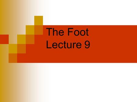 The Foot Lecture 9. The Foot one of the highest incidence of sport injuries account for 20 to 25 % of injuries associated with running and jumping sports.
