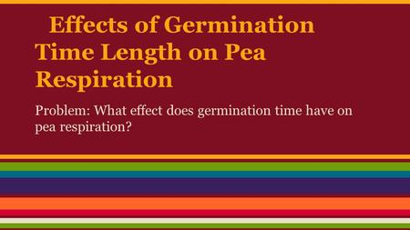 Effects of Germination Time Length on Pea Respiration Problem: What effect does germination time have on pea respiration?