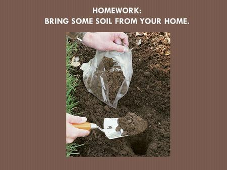 BRING SOME SOIL FROM YOUR HOME.