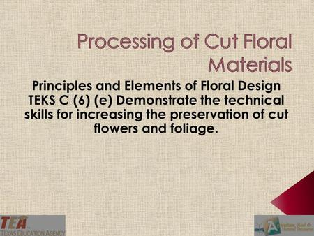 Determine the importance of processing cut flowers. Identify steps in processing cut flowers. Create a role play demonstrating the steps involved in.