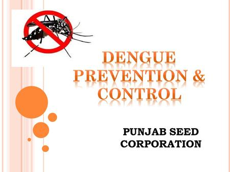 PUNJAB SEED CORPORATION. What is dengue fever? Dengue Fever is an illness caused by infection with a virus transmitted by the Aedes mosquito.