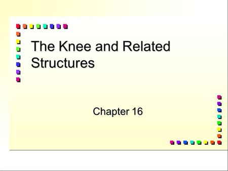 The Knee and Related Structures Chapter 16 Vocabulary n Anterior Cruciate Lig. n Bursa n chondromalacia n Hemarthrosis n Joint capsule n Joint mice n.