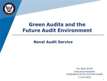 Future Audit Environment